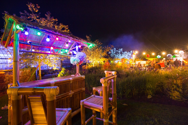 Summer Party Festivals