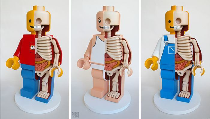children-cartoon-toy-anatomy-bones-insides-jason-freeny-12