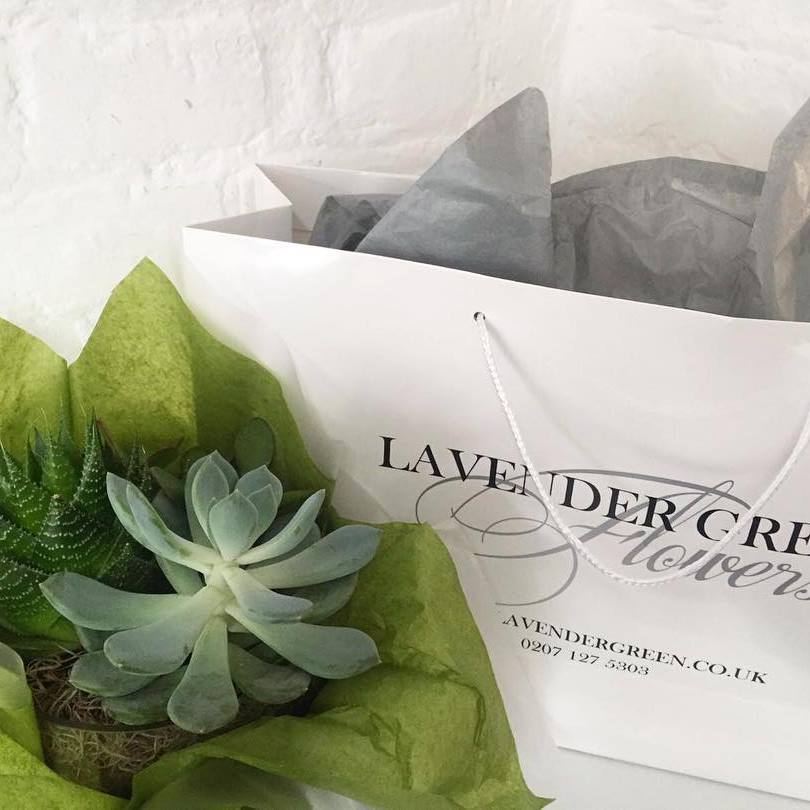 Thank you @lavendergreenflowers for this lovely treat! We've never met a succulent we didn't love!